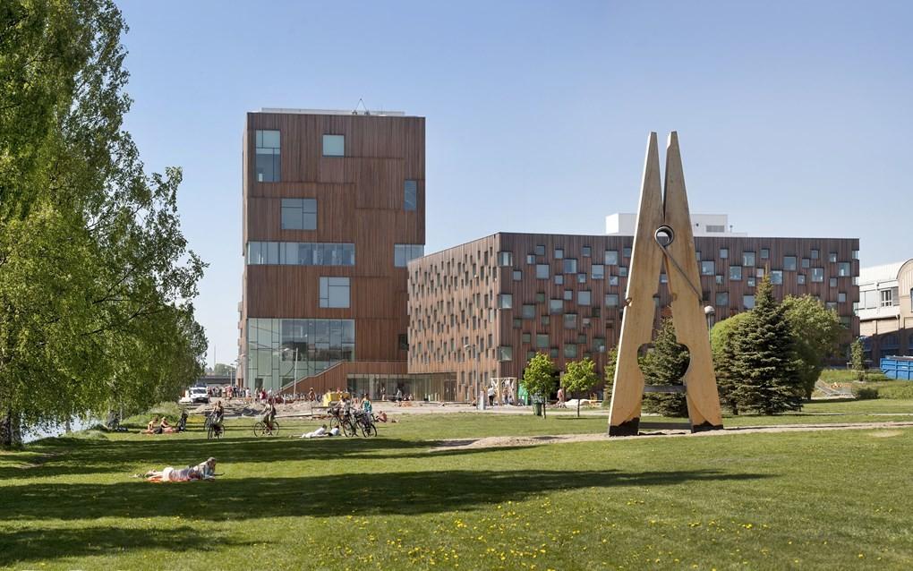 موقعیت پست دکترا دانشگاه Umeå  سوئد
